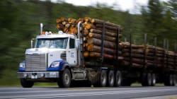 These Provinces Will Take The Biggest Hit From Trump's Lumber