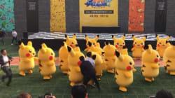 Le destin tragique de ce Pikachu qui ne voulait que