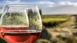 Argentina's Wine Tourism Keeps On