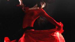 DansEmotion 2012: un nouveau