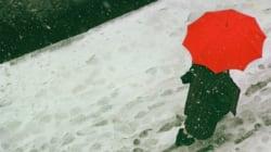 「日常で見逃されている美を...」伝説の写真家ソール・ライターが、83歳で脚光をあびた理由(画像)