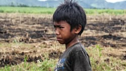A Life I Can't Imagine For My Son: Sugar Plantation
