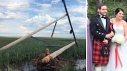 Beaver Almost Ruins Sask. Couple's Wedding Because This Is