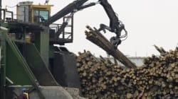 Tembec a confirmé un investissement à son usine de Témiscaming au