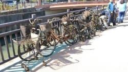 「不法投棄なんとかしたい」通算1000台の自転車を引き上げた寺の住職