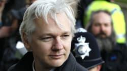 WikiLeaks: Julian Assange se présente aux élections en
