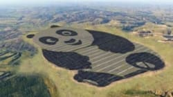 巨大パンダ、地球温暖化に立ち向かう。5万世帯の電力を供給へ