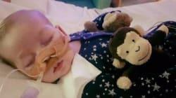 尊厳死裁判の赤ちゃん、入院先に数千の脅迫 他の子どもへの見舞家族にも嫌がらせ
