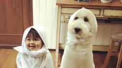 いつも一緒だよ。モフモフな兄弟たちと遊ぶ赤ちゃんが楽しそう(画像集)