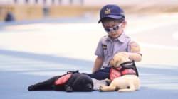 台湾警察、未来の警察犬の写真をまた公開 わんちゃんたちは相変わらずおねむだった(写真)