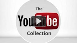 Vidéos: poisson