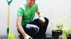 Bientôt «Fermier urbain» avec Ricardo