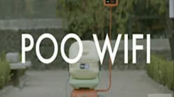 Free Wi-Fi For Dog Poo: Mexican Initiative Works By