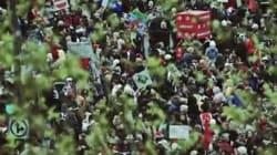 Vidéo: «Les oies sauvages» de Mes