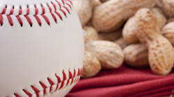 Peanut-Controlled Zones Created At Toronto Blue Jay