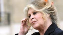 Bardot veut aller en prison à la place de Paul