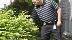 Major Crime Unit Descends On Gatineau