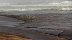 Ottawa n'est pas prêt à faire face à une marée