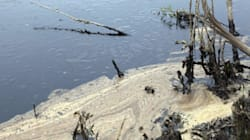 Oil Spill Could Have Been Much Worse: Pipeline