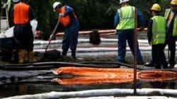 Fuite dans la rivière Kalamazoo en 2010 : Enbridge avait ignoré les