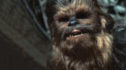 La tête de Chewbacca mise à prix