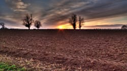 Farm Fatalities No Longer Reported in