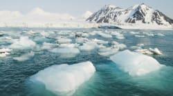 An Ice-Free Arctic