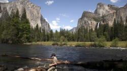Parc de Yosemite: alerte au virus mortel pour 10 000