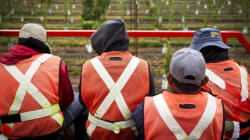 Systemic Exploitation Of Migrant Workers A 'Made-In-Canada