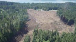 Landslide Area Remains