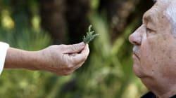 Alzheimer: se situer dans une relation