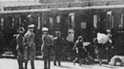 Memoria, la Provincia consegna ricerca inedita su bambini romani deportati ad Auschwitz dai
