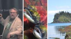 Haida Gwaii Waters Host World's Biggest Geoengineering