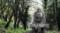 Avete mai visto un treno fantasma?