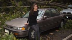 Elle utilise Sandy pour faire des photos glamours: le web se