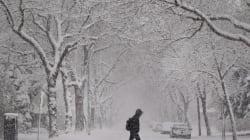 Tourism Ads Remind Edmonton Just How Cold It