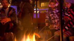 Noël dans le parc : l'événement féerique qui rend vos voisins