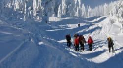 Lost, Injured Skiers Pulled Off B.C.