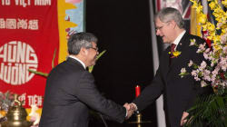 Harper Rings In Vietnamese New