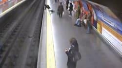 Sviene mentre aspetta la metro e cade sui binari. Salva grazie ad un agente