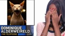Sur Canal+, la photo de Dodo la Saumure remplacée