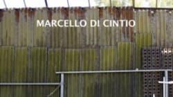 Walls: An