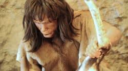 La langue des hommes préhistoriques reconstituée par