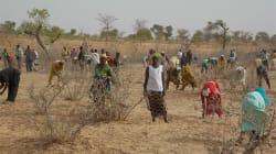 The People of Sahel Need