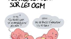 Le débat sur l'alimentation OGM