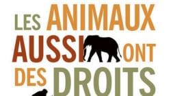 La condition animale, un enjeu sociétal et une révolution en