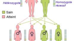 Cancer: les avancées de la médecine nous permettront de lutter contre les