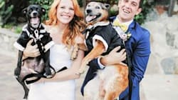 25 Photos Of Dogs At Weddings That Are Paws-itively