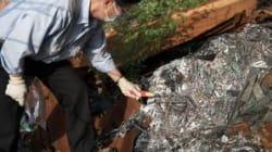 Inside Hong Kong's Toxic Gadget