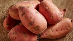 Scientists' 'Breakthrough' Sweet Potato Will Reduce Hunger For